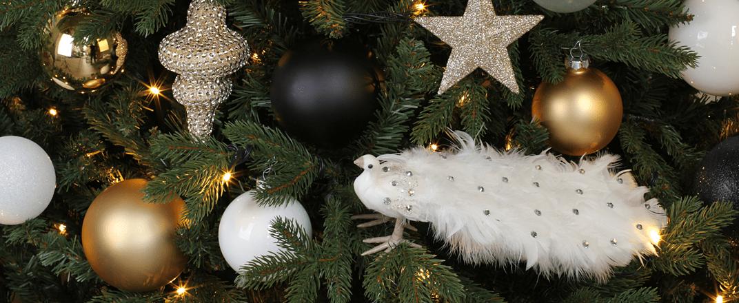 ModernGlamour_Christmas.png